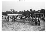 Groundbreaking Buses, September 18,1971 by Andrew Farkas