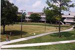 University Green, 1998