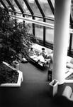 Library Atrium, 1996