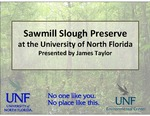 Sawmill Slough Preserve at the University of North Florida by James Taylor