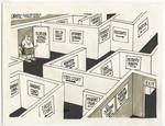 The Florida Voting Maze