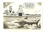 Jacksonville Beaches Have Shark Attacks!!