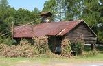 Abandoned Daisy GA