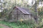 Old Barn Mt. Pleasant FL