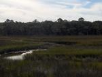 Round Marsh 2