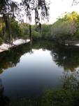 Suwannee River 1