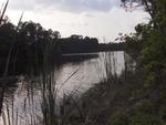 UNF Lake