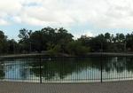 Riverside Park, Duck Pond 1, Jacksonville, FL