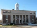 Atkinson County Courthouse 3, Pearson, GA