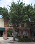 1500 Block Main St., Alachua, FL