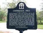 Chinsegut Hill Marker, Brooksville, GA