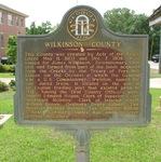 Wilkinson County Marker, Irwinton, GA