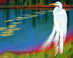 Great Egret Waiting Patiently
