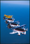 Air. Star Aerobatic Team (Fernandina Beach) 11
