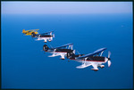 Air. Star Aerobatic Team (Fernandina Beach) 12