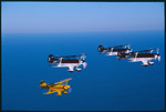 Air. Star Aerobatic Team (Fernandina Beach) 22