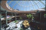 Avenues Mall - Interiors 2