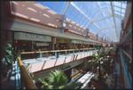 Avenues Mall - Interiors 10