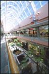 Avenues Mall - Interiors 11