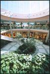 Avenues Mall - Interiors 12