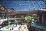 Avenues Mall - Interiors 22