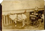 Photograph: Young boy in a cart pulled by a goat, Jacksonville, Florida 1923