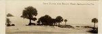 Photograph: Panoramic Photo captioned Sand Dunes and Beach, Jacksonville Beach, Florida; 1925