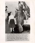 """Photograph: Press photograph with caption of """"Ocean Monster"""" with woman, Jacksonville Beach, Florida; April 4, 1957"""