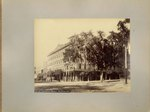Mounted Photograph: Group of 12 mounted Photographs of Jacksonville, Florida before the 1901 fire; 1800's