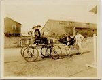 Photograph: Couple in cart, the Florida Ostrich Farm, Jacksonville, Florida 1900's