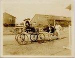 Photograph: Couple in cart, the Florida Ostrich Farm, Jacksonville, Florida 1900's