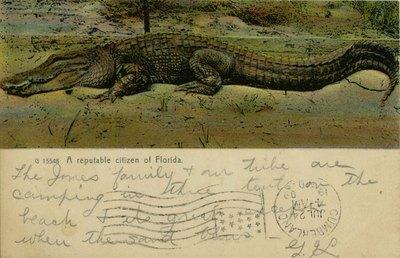 Postcard: A reputable citizen of Florida, Pablo Beach