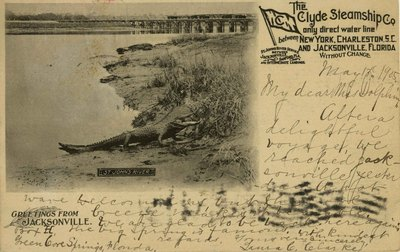 Postcard: The Clyde Steamship Co., Greetings from Jacksonville, Florida