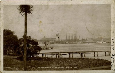 Postcard: Jacksonville and St. Johns River, Fla