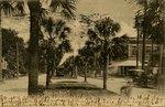 Postcard: Photo by Rust, Main Street, Jacksonville, Florida