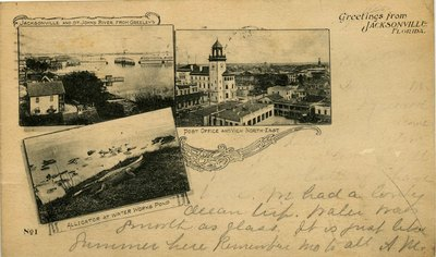 Postcard: Jacksonville and St. Johns River from Greeley's, Jacksonville, Florida