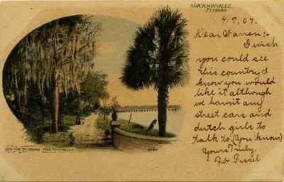 Postcard: On the St. Johns, Mrs. Mitchell's, Jacksonville, Florida