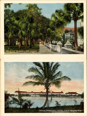 Souvenir Postcard Folder:  Illustrating in Colors Places of Interest in the State of Florida, Jacksonville, Florida; 1915