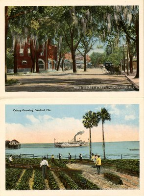 Souvenir Postcard Folder: Souvenir Postcard Folder Illustrating in Colors Places of Interest in the State of Florida, Jacksonville, Florida; 1915