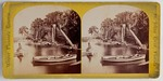 Stereograph Card: Palmettos, Floral Bluffs, Near Jacksonville, Winter Pleasure Resorts, St. Johns River, Florida; 1875