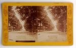 Stereograph Card: 129 Hogan Street, West, Jacksonville, Florida; 1870-1890