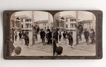 Stereograph Card: Acrobats far from their Mountain Home-Grizzly Bears in a Street at Jacksonville, Florida; 1880-1900's