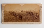 Stereograph Card: Drilling Volunteers at Jacksonville, Fla.; 1898
