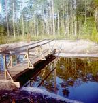 Bridge Over Candy Cane Lake