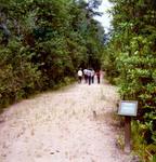 Nature Trails, 1975.