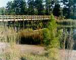 Bridge over Lake Oneida by University of North Florida