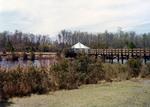 Lake Oneida, 1980