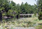 Lake Oneida, 1998?