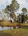 Lake view, 1985?