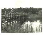 Indian Heart Bridge